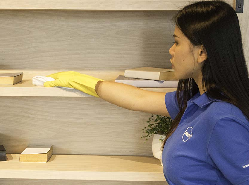 housekeeper cleaning cabinet